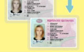 Какие документы нужны при потере водительского удостоверения