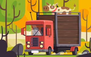 Какие документы нужны для переоборудования грузового автомобиля